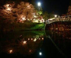 上越市にある夜の公園